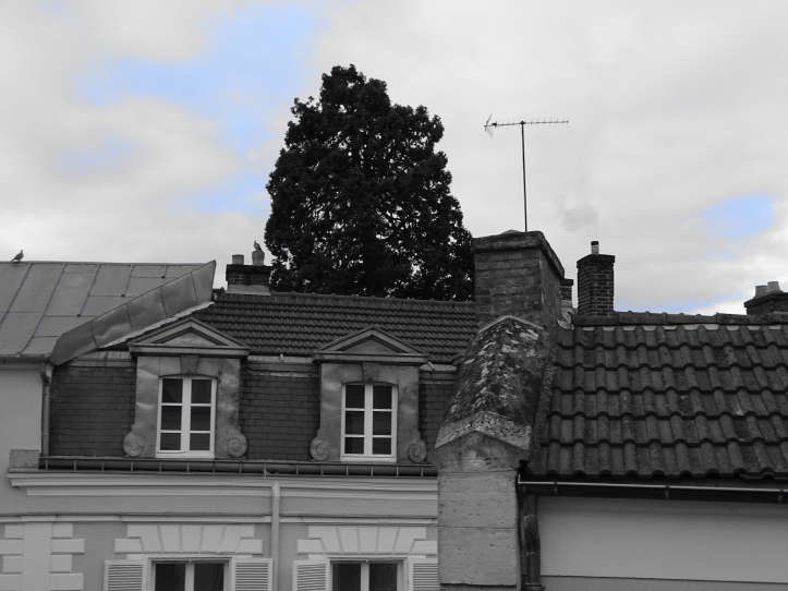 noir et blanc ciel bleu